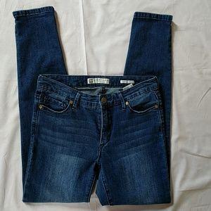 Anne Klein Skinny Ankle Blue Jeans